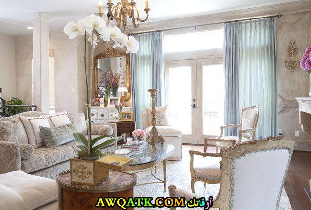 غرفة معيشة فرنسية أنيقة وجميلة