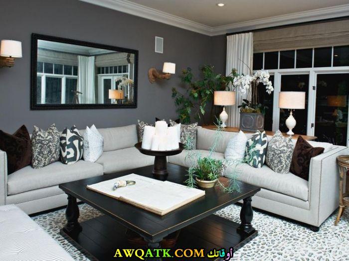غرفة معيشة مودرن باللون الرمادي رائعة