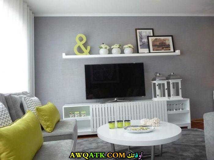 غرفة معيشة مودرن باللون الرمادي روعة