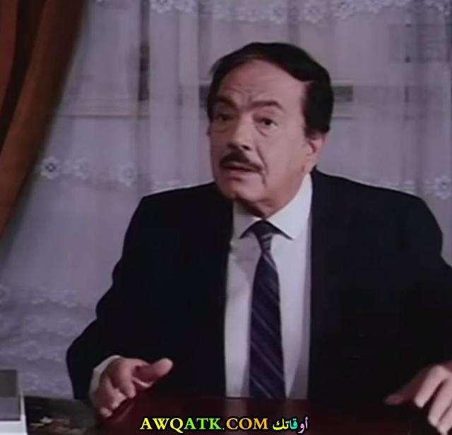 الفنان كمال الشناوي