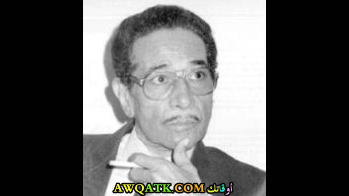 محمد الموجى