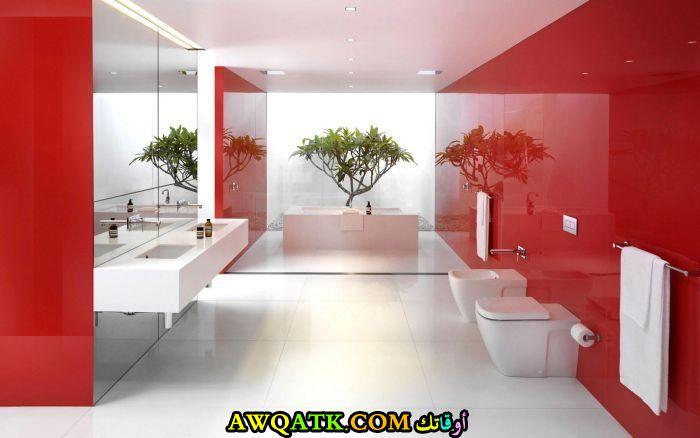 ديكور حمام ابيض واحمر فى منتهى الجمال