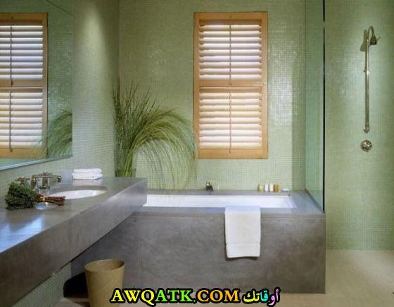 ديكور حمام باللون الأخضر رائع هادى