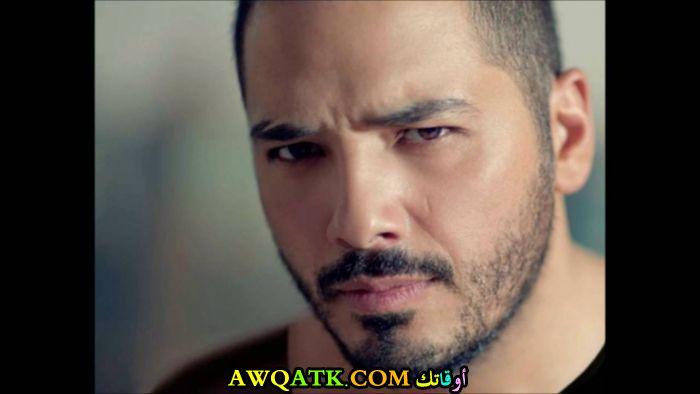المغني رامي عياش