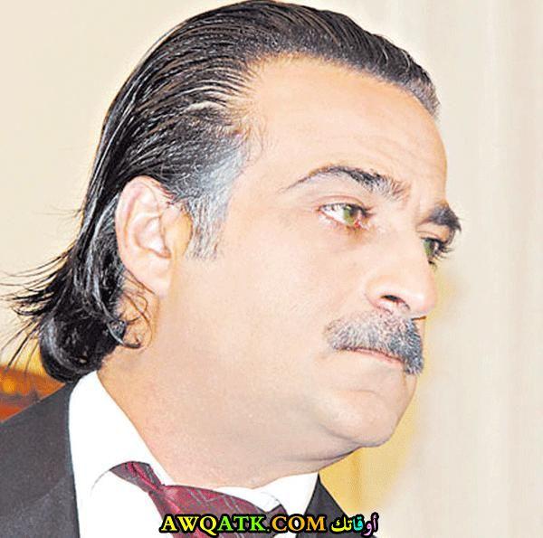 الفنان مجدي مشموشي