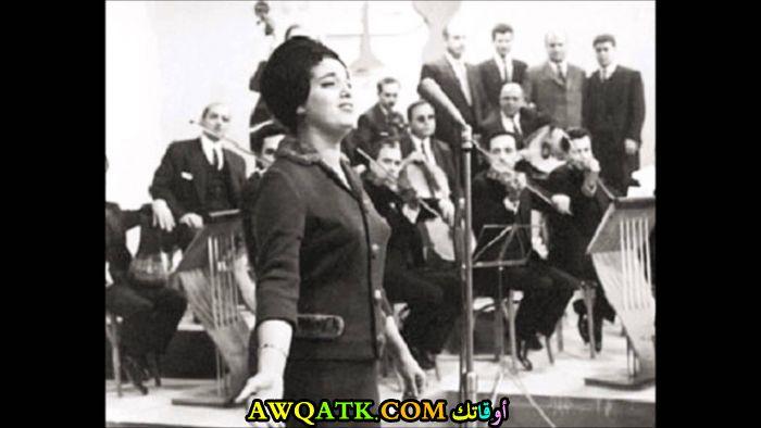 مها الجابري