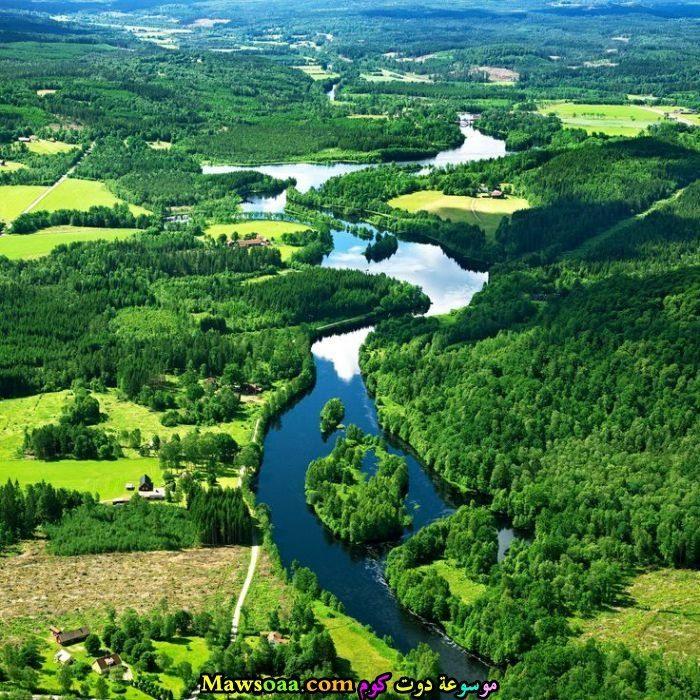 نهر صغير