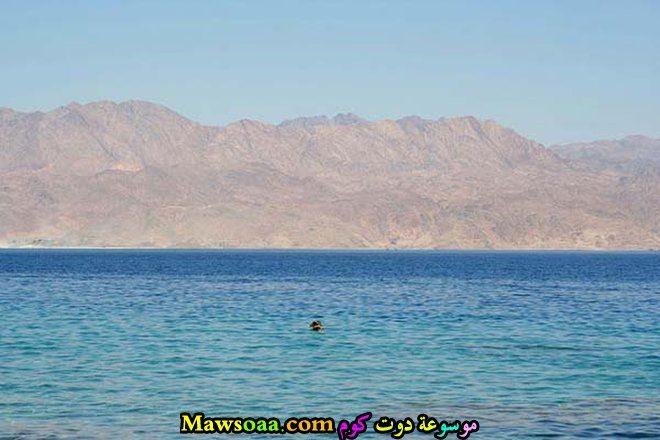 جبال البحر الاحمر