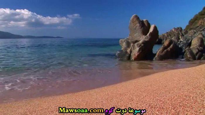 صخور على الشاطئ