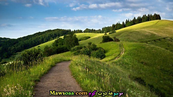 مساحات خضراء واسعة