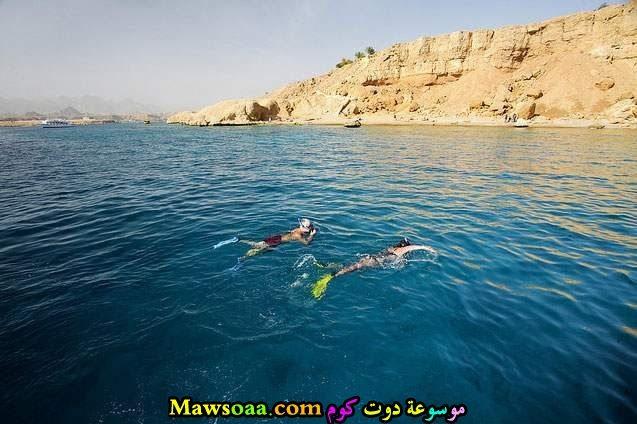 مناظر طبيعية للبحر الاحمر 16