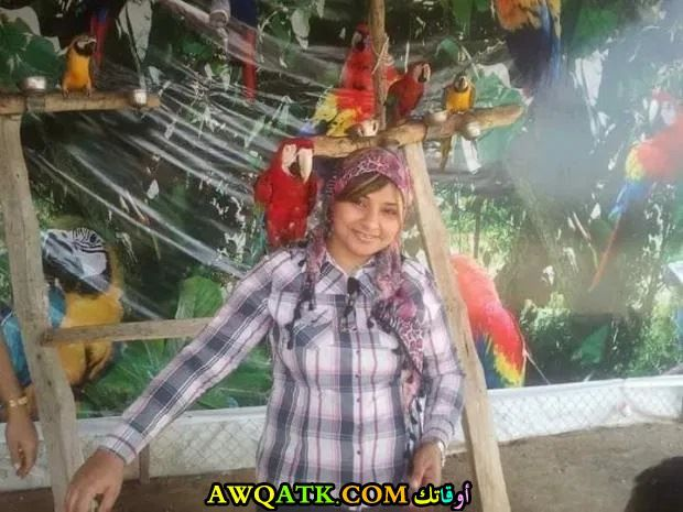دينا أنور بالحجاب